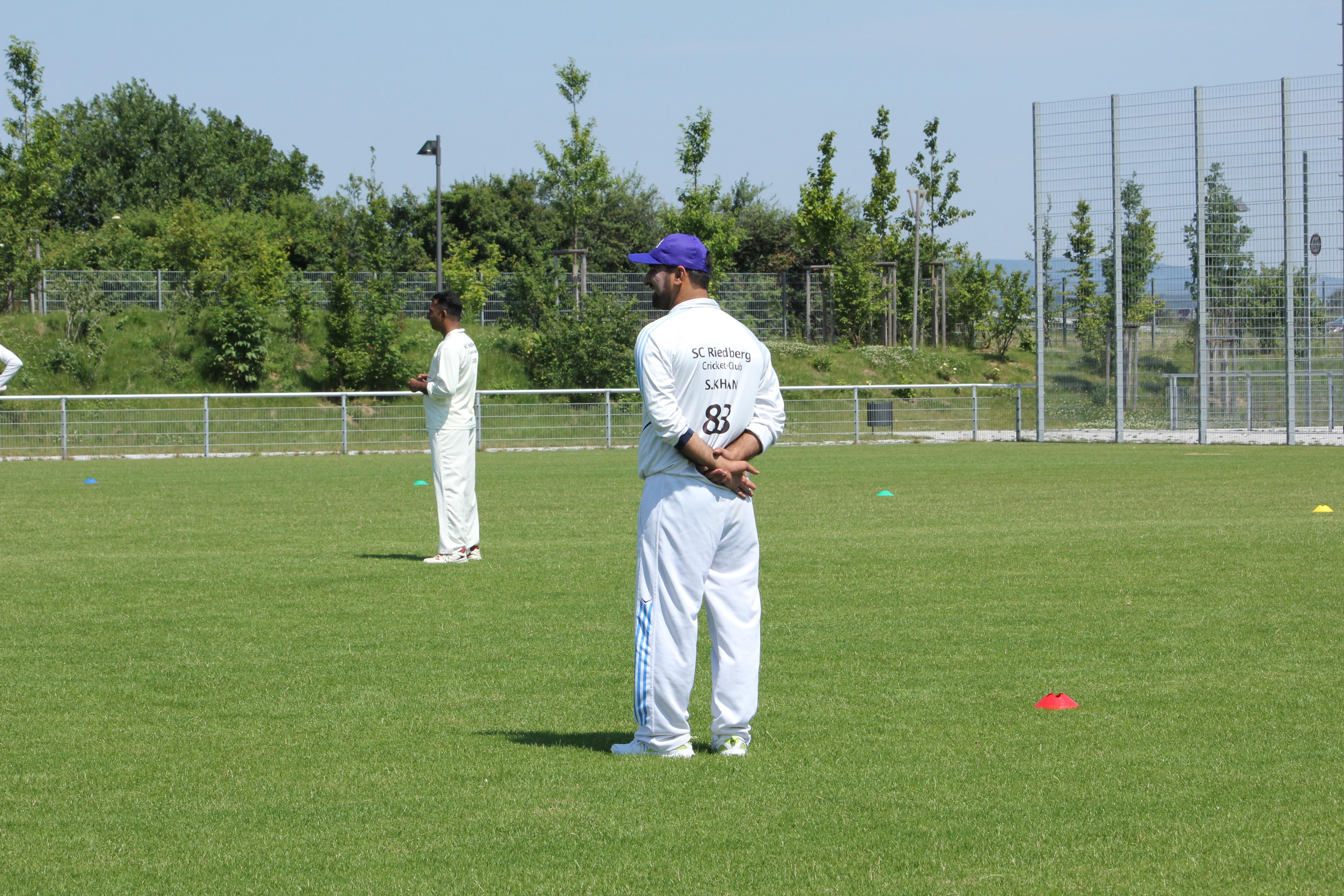 cricket auf deutsch