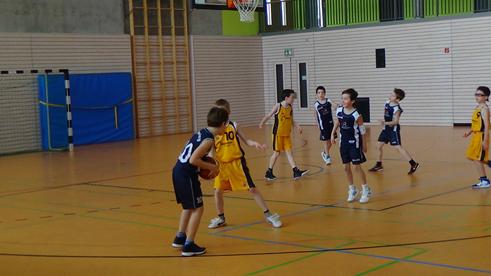 SCR Basketballer U10 gewinnt gegen TV Hofheim